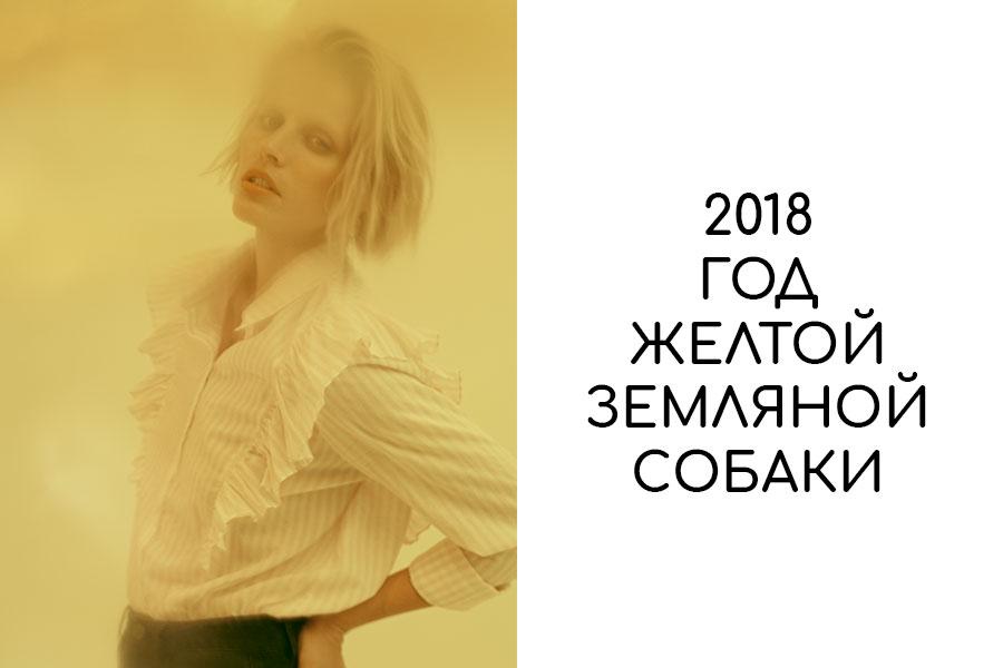 chto-nadet-na-novyj-2018-god-sobaki-obsuzhdaem-stilnye-idei